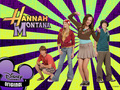 wall - hannah-montana wallpaper