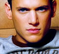 wentworth miller - wentworth-miller photo