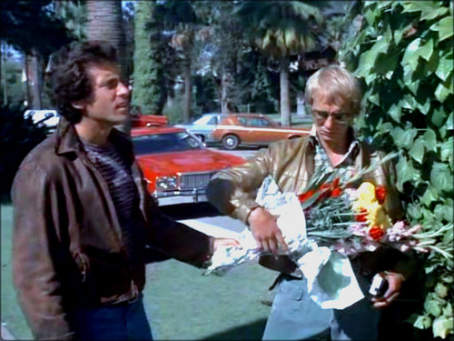 Starsky and Hutch (1975) Обои containing a улица, уличный called ☆ Starsky & Hutch ☆