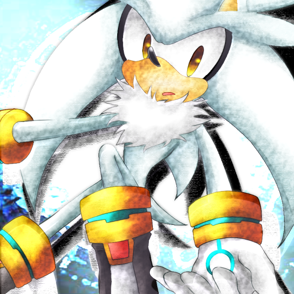 Silver the Hedgehog 戦いが終わった時