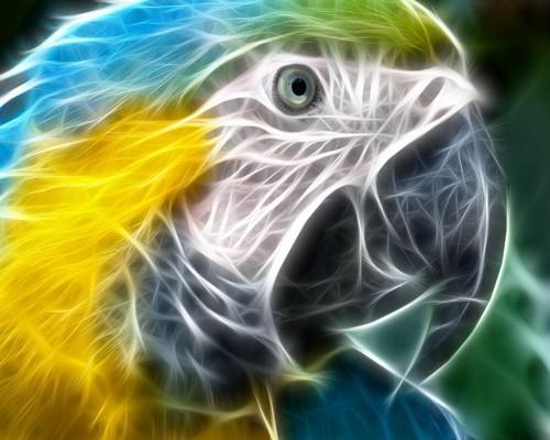 3-D Bird
