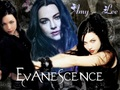 evanescence - Amy Lee Collage wallpaper