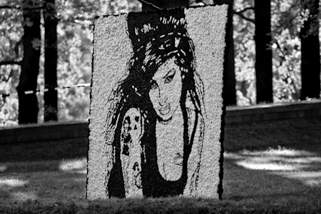 Amy Winehouse images Amy Winehouse wallpaper and background photos