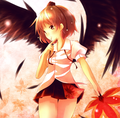 Anime Wings
