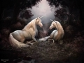 A Secret Hide Away - unicorns photo