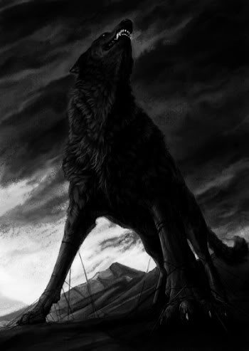 Black wolf ( Dark )