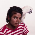 Bonnie Schiffman Photoshoot - michael-jackson photo