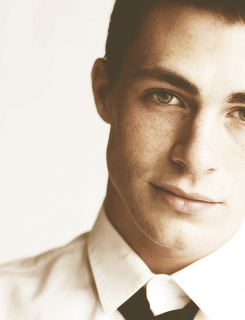 Colton Haynes wallpaper probably with a business suit entitled Colton Haynes