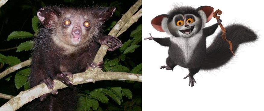 Compare Maurice!