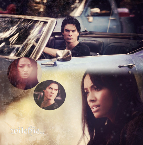 Damon and Bonnie 3x07  - damon-and-bonnie Photo