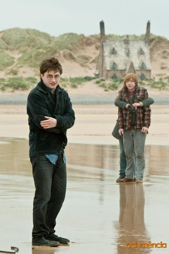 Deathly Hallows Part I BTS Photo
