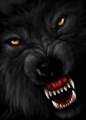 Dire wolf dire wolf photo