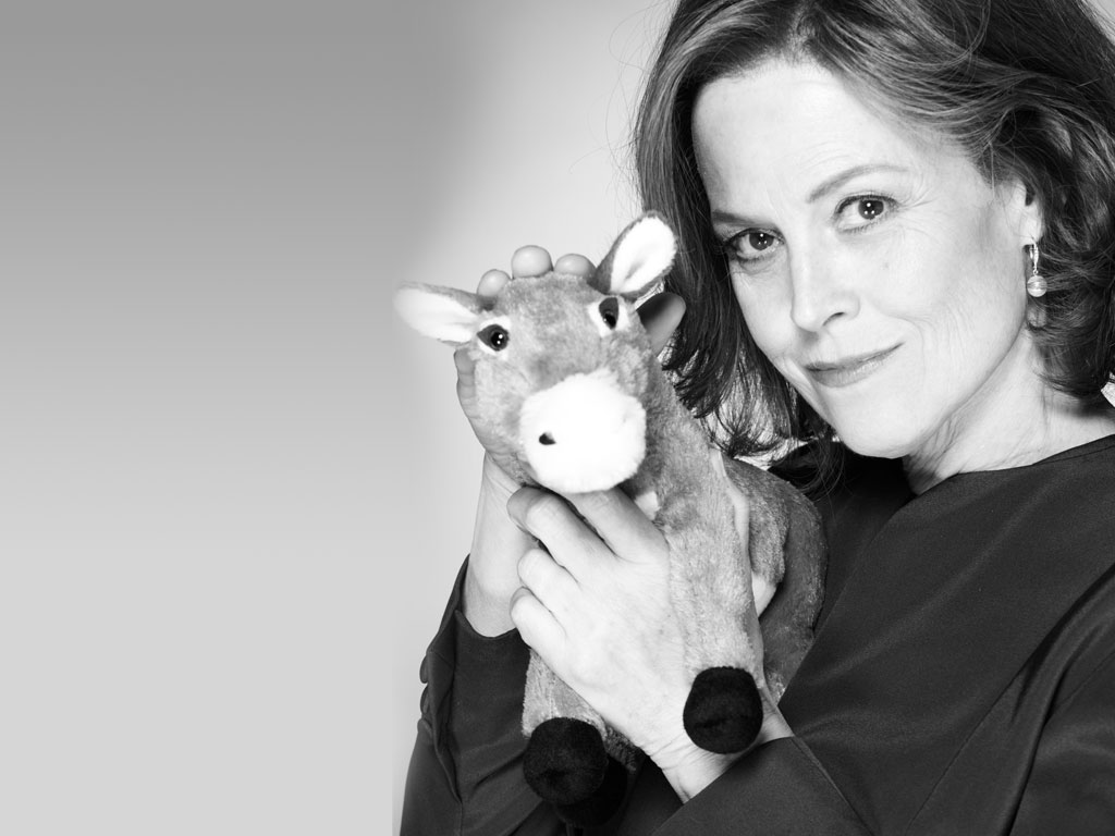 Political Animals images Elaine Barrish Promo HD wallpaper ...