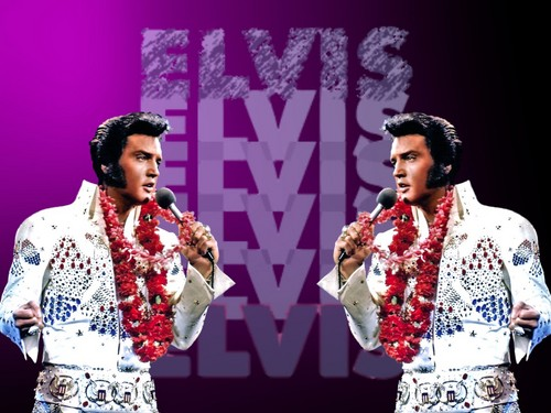 Elvis Presley wallpaper entitled Elvis Aloha