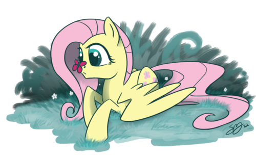 FLUTTERDUMP - my-little-pony-friendship-is-magic Photo