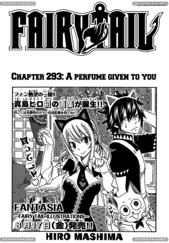 Fairy Tail Chapter 293