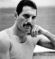 Freddie Mercury - HQ