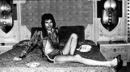 Freddie MErcury wallpaper containing bare legs, a throne, and tights titled Freddie Mercury