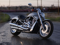 Harley Davidson VRSC - motorcycles photo