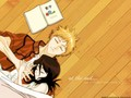 IRness!!! - ichigo-and-rukia-sun-and-moon fan art