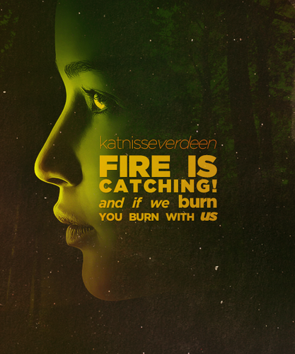 Katniss Everdenn - catching-fire Photo