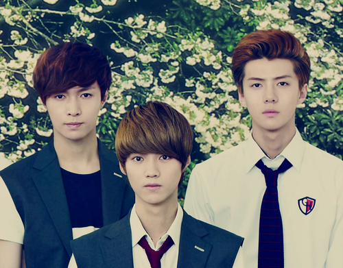Lay, Luhan and Sehun for To The Beautiful You!