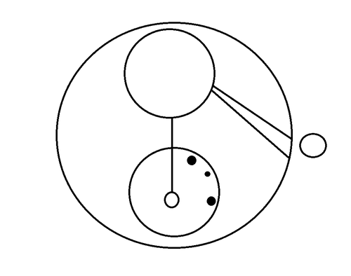 Liam's name in Gallifreyen