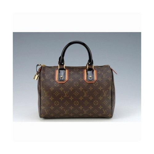 Louis Vuitton monogram canvas Speedy Mirage bag M95555