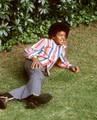 Michael Ochs Archive Photos - michael-jackson photo