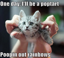 One day, I will be a Nyan Cat..
