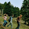 PoA - harry-james-potter Icon