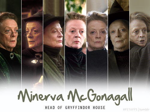 Hogwarts Professors wallpaper probably containing a sign called Professor McGonagall
