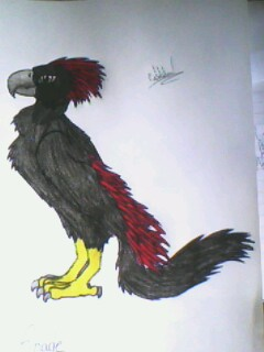 Shade's Bird Form