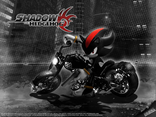 Shadow the hedgehog customised kertas dinding