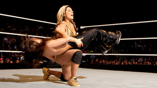 Should Kaitlyn Be Booker T's Assistant? - wwe-divas Photo