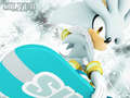 Silver Riders - silver-the-hedgehog wallpaper