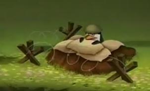 Soldier penguin, auk