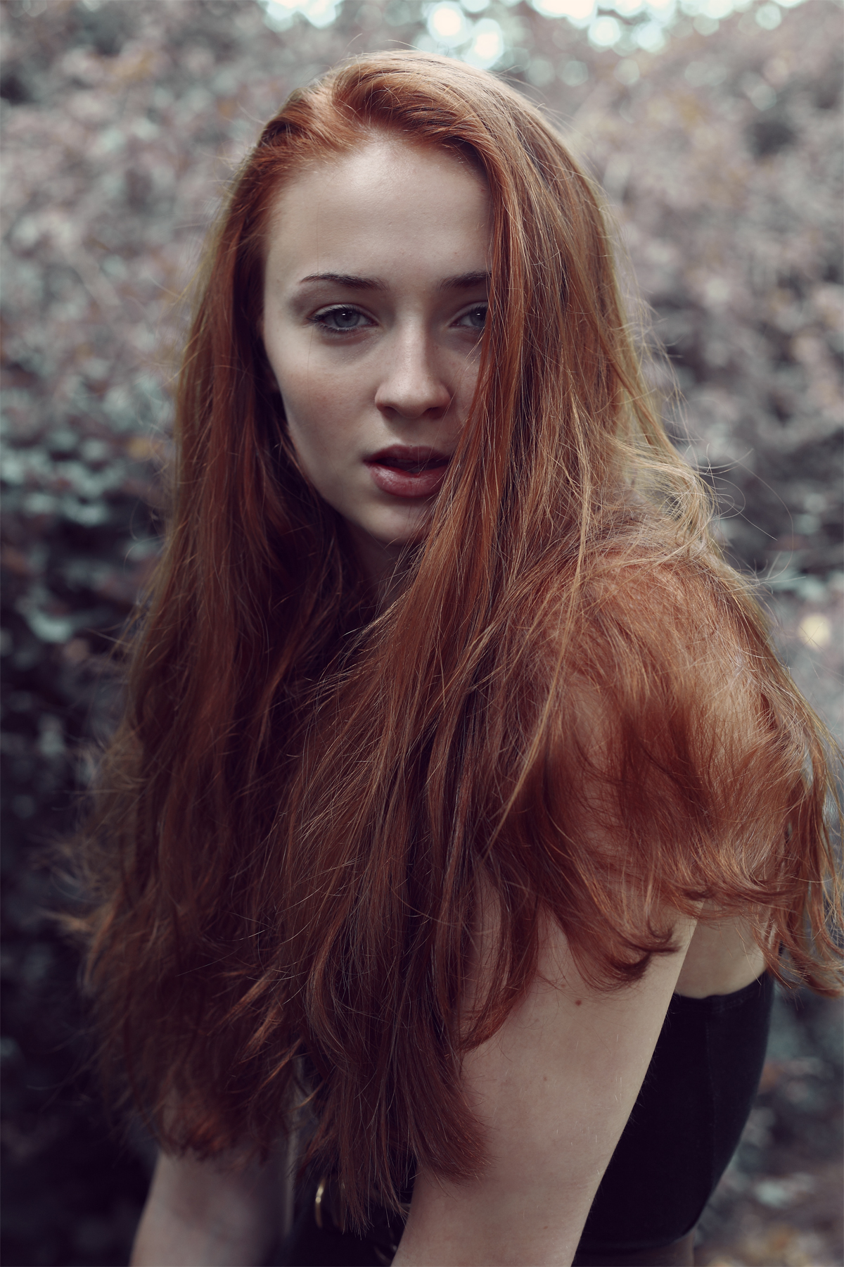 Sophie Turner Sophie Turner Game Of Thrones Jpg Pictures to pin on ...