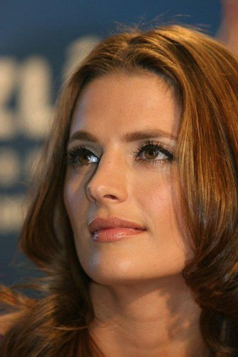 Stana Katic Hintergrund containing a portrait called Stana Katic
