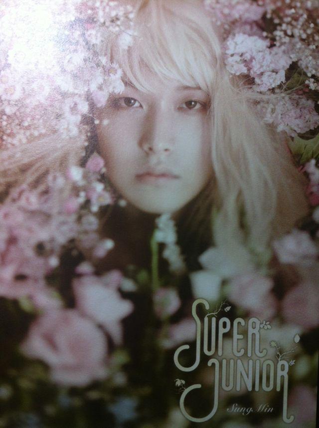 Super Junior S.M.A.R.T Exhibition cards