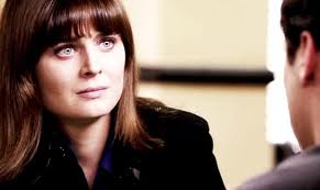 Temperance Brennan پیپر وال with a portrait titled Temperance Brennan