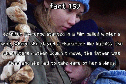 The Hunger Games facts 141-160 - the-hunger-games Fan Art