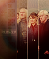 The Malfoy's  - draco-malfoy fan art