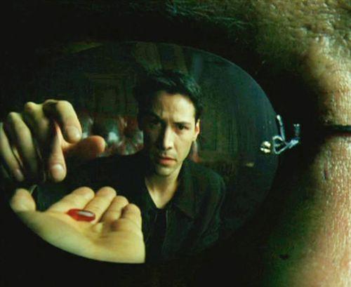 The Matrix 壁紙 called The Matrix