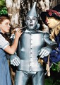 The wizard of Oz - the-wizard-of-oz photo