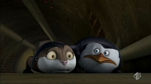 Penguins of Madagascar wallpaper titled They've been caught!