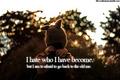 broken hart-, hart qoutes