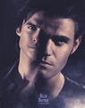 bros - damon-and-stefan-salvatore fan art