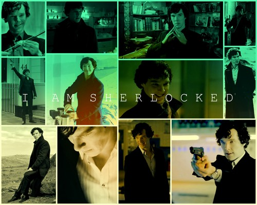 Sherlock on BBC One wallpaper probably with a portrait called i am sherlocked