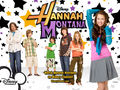 miley walls - miley-cyrus-and-hannah-montana-lovers wallpaper